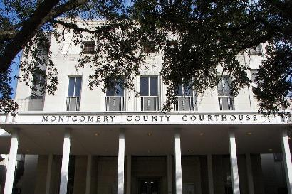 the woodlands probate court